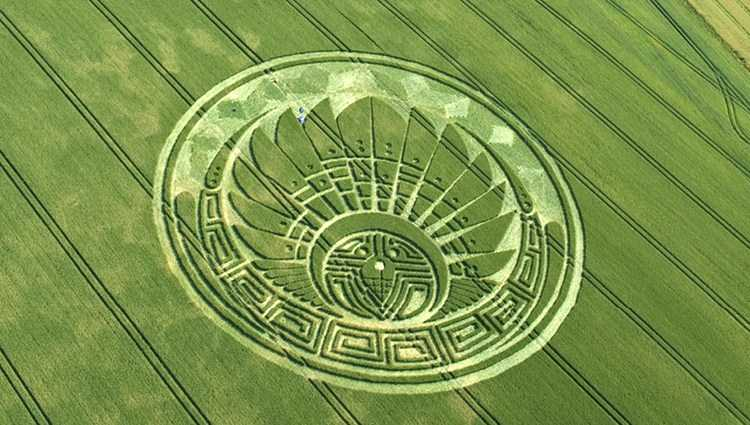 More Crop Circles